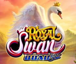 Royal Swan Quad Shot